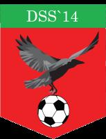 DSS'14 1
